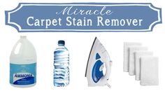 Miracle Carpet Stain Remover . . . Just 2 Ingredients!