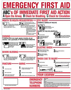 Make sure everyone knows basic first aid