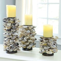 Oyster Shell Candle Holders