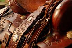 Saddles, Saddles and more Saddles