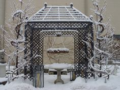 Branch pergola in winter