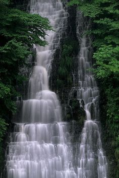 Oisirazu Falls, Akita, Japan #dog #akita #animal