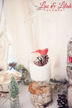 Pretty Holiday Christmas decorating idea! Put fake snow and pinecones in apothecary jars! Via KarasPartyIdeas.com