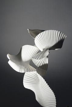 Richard Sweeney | Experimental pleat (Bird in Flight)