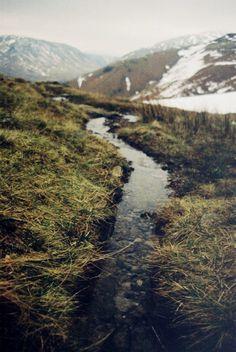 grass, water, mountains.