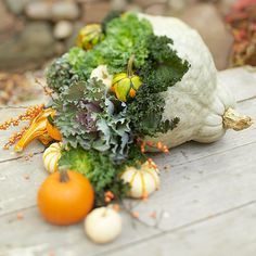 It's a beautiful cornucopia centerpiece! Use a mixture of gourds, pumpkins, clumps of kale, small berry branches and twigs for a full looking display.