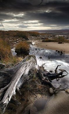 Relics Loch Shin Scottish Highlands, Scotland, UK #travel
