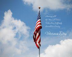 american pride, 2013, holiday hoopla, happi veteran, veterans day, patriot holiday, educ, usa, holiday facebook