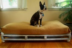 Pallet DIY Pet Bed