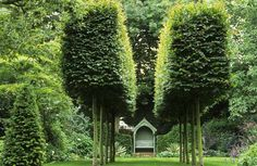 Large Formal Garden by Judith Sharpe -  © Marianne Majerus