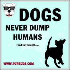 DOGS  Never Dump Humans ..... food for thought, anim rescu, dogs, anim cuti, furbabi, anim wisdom, dump human, redland poodl