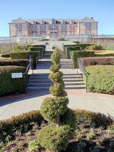 Domaine Carneros Vineyards & Winery, Sonoma, CA. Love it!