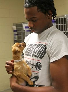 Volunteers needed for PAWS animal shelter in Anderson for grooming, exercise, etc.