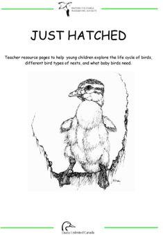 Make Way For Ducklings - Printable Go Along Activities - FIAR