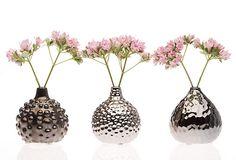 Gourd Vases, 3 Asst. on OneKingsLane.com
