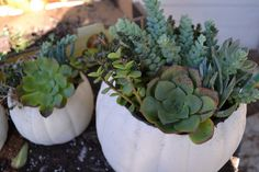 Carve a 'Funkin' to make a planter