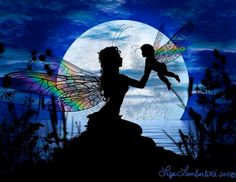 Enchanted Faeries