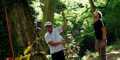 Tree Climbing #Franc