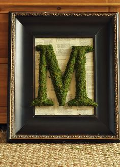 framed moss covered letter