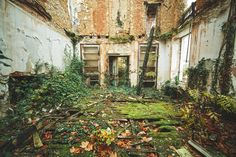 residential garden invades Haunting photos of abandoned castles