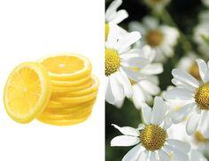 beauty diy recipe lemon juice hair lightener