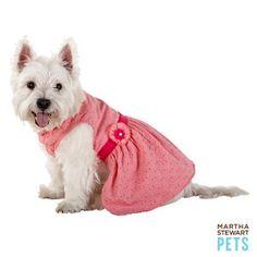 Martha Stewart Pets® Layered Eyelet Dress | Dresses | PetSmart