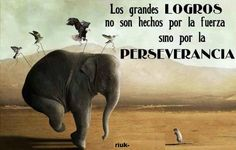 Perseverancia es una de las palabras clave para lograr nuestros objetivos; nunca te des por vencido. Danos like en Facebook: https://www.facebook.com/valoresparatodalavida