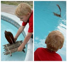 How to make a stick raft with kids. Build it, float it, experiment. Can it hold...a rock? Lego man?   Build it class