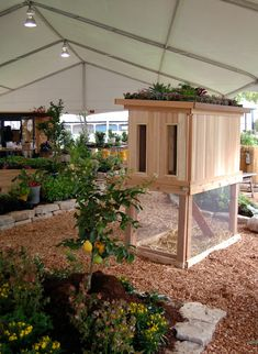 Chicken coop with raised bed garden. I want chickens.