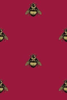Timorous Beasties - Wallcoverings - Napoleon Bee