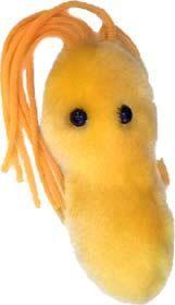 Ulcer Plush Doll (X)