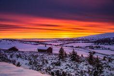 Winter morning ... by Jørn Allan Pedersen on 500px
