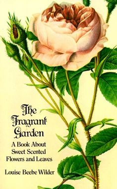 The Fragrant Garden by Louise Beebe