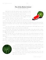 The Only Watermelon – Third Grade Reading Comprehension Test: Use the information in the story to answer the 5 comprehension questions. Answer Key Is Included.    The Only Watermelon – Third Grade Reading Comprehension – Click Here    Information: Third Grade Reading Comprehension. 3rd Grade Reading Comprehension Test Practice.