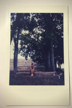 Polaroids in Texarka