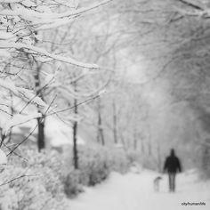 christians, outdoor winter photography, art, cityhumanlif christian, winter wonderland, place, winter vacations, winter scenes, christian work