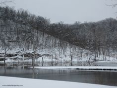 Ozarks, Swan Lake, Forsyth, Missouri. Beautiful at anytime of the year! Click here  for more photos and blog: www.robinballdesignsblog.com