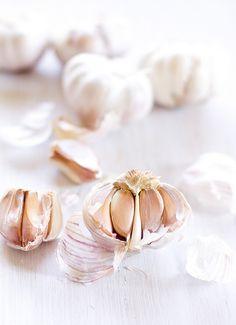 just garlic