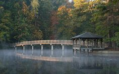 Gazebo and bridge overlooking Westhampton Lake on the University of Richmond campus