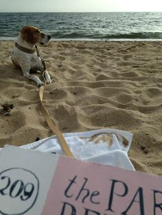 Good size and durable, for beach reading #readeverywhere