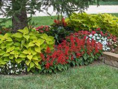 shaded garden ideas, shade garden, landscapegarden idea, backyard retreat
