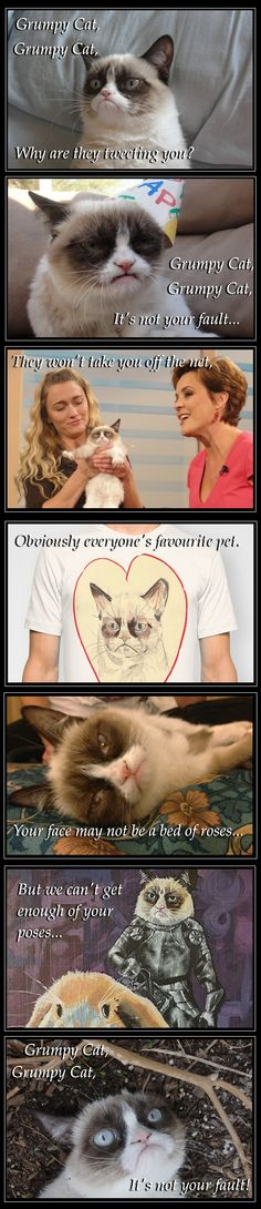 Grumpy cat, grumpy cat - lyrics by Pheobe Buffay -Friends