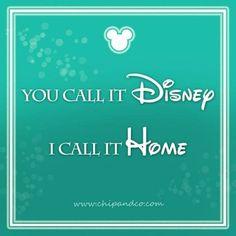 Walt Disney World Resort Contact Information