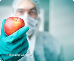 Apple extract kills colon cancer cells better than chemo drug in latest study
