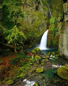Wahclella Falls, Columbia River Gorge, Oregon