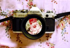 window, student, goth, backgrounds, canon cameras, florals, flowers, feelings, vintage style