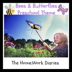 Bees and Butterflies Preschool Theme