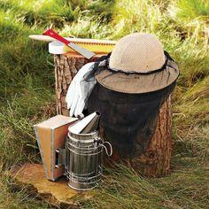 Backyard Beehive Starter Kit #williamssonoma