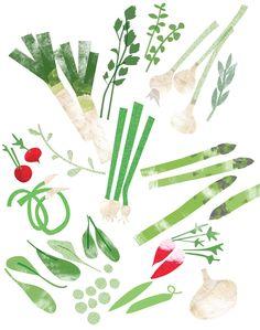 veggies | eric carle