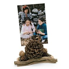 pines, pictur holder, thanksgiving crafts, idea, pinecon photo, photo holders, crafts pinecones, diy, pine cone crafts